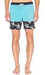 Пляжные шорты shangri - Globe
