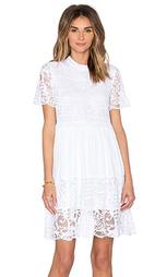 Кружевное платье солнцеклёш - KENDALL + KYLIE