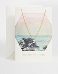 Ожерелье с кристаллами Swarovski и открыткой Orelia Summer Story