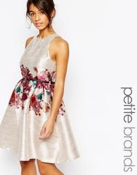 Платье для миниатюрных с цветочным принтом Little Mistress Petite