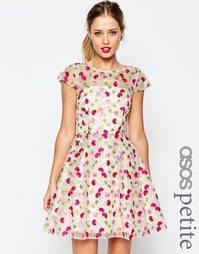 Приталенное платье с цветочной вышивкой ASOS PETITE SALON - Мульти