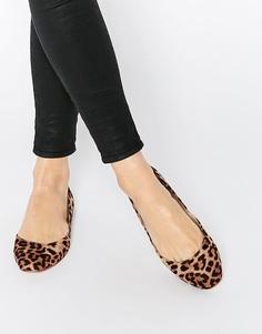 Балетки с квадратным носом ASOS LEONIE - Leopard