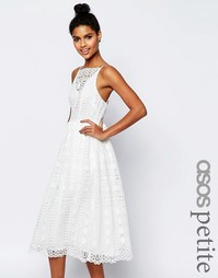 Платье миди из кружева с геометрическим узором ASOS PETITE Premium