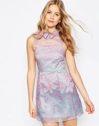 Короткое приталенное платье из органзы с контрастным воротником ASOS