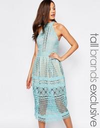 Кружевное приталенное платье миди с высокой горловиной Jarlo Tall