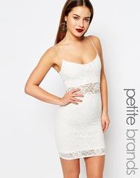 Кружевное облегающее платье мини Boohoo Petite - Кремовый