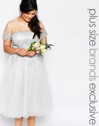 Кружевное платье миди Chi Chi London Plus - Серый
