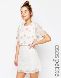 Платье мини с укороченным лифом и 3D вышивкой ASOS PETITE SALON