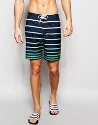 Пляжные шорты в полоску Hollister - Черный