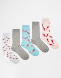 Набор из 5 пар носков с птицами ASOS - Мульти