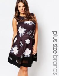 Короткое приталенное платье с цветочным принтом и сетчатыми вставками Praslin