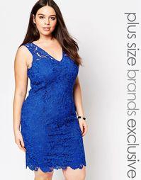 Кружевное платье‑футляр с глубоким вырезом Paper Dolls Plus - Синий