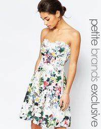 Платье для выпускного с кружевной отделкой и принтом Paper Dolls Petit