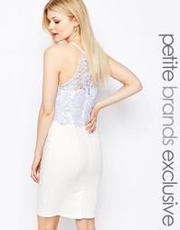 Платье-футляр с кружевным лифом и халтером Paper Dolls Petite - Белый