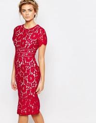 Малиновое кружевное платье-футляр Coast Marlia - Малиновый