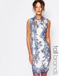 Кружевное платье‑футляр с высокой горловиной и принтом Paper Dolls Tal