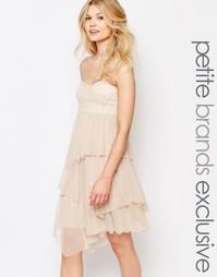 Платье-бандо миди с отделкой пайетками и тюлем John Zack Petite