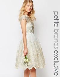 Платье для выпускного миди с кружевом металлик Chi Chi London Petite P