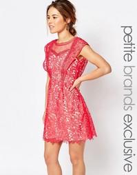Кружевное платье мини с оборкой на рукаве Little Mistress Petite
