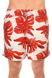 Шорты пляжные Billabong All Day Floral 16 Stone