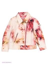 Куртки CHOUPETTE