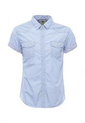 Рубашка Forex