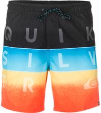 Шорты пляжные мужские Quiksilver