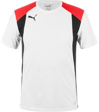 Футболка мужская Puma Bts