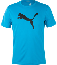 Футболка мужская Puma Essential