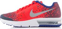 Кроссовки для мальчиков Nike Air Max Sequent Print (GS)