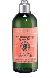 Восстанавливающий шампунь L`Occitane