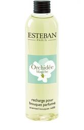 Аромат для деко букета Белая орхидея Esteban
