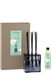 Деко букет с ароматом Белая орхидея Esteban