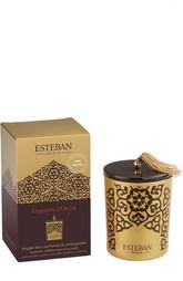 Декоративная арома-свеча Легенды Востока Esteban