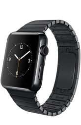 Apple Watch 42mm Space Black Stainless Steel Case with Link Bracelet Apple