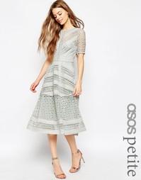 Нарядное кружевное платье миди ASOS PETITE Premium - Серый