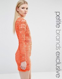 Кружевное платье мини с длинными рукавами True Decadence Petite