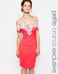 Платье-футляр без рукавов с контрастной кружевной отделкой Paper Dolls
