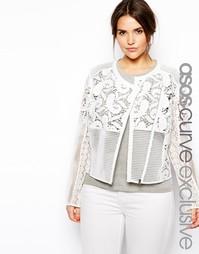 Кружевная куртка эксклюзивно для ASOS CURVE - Белый