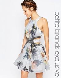 Короткое приталенное платье с высокой горловиной и декорированным выре Little Mistress Petite