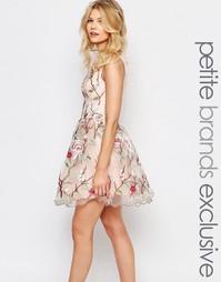Короткое платье для выпускного премиум-класса Chi-Chi London Petite