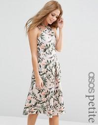 Структурированное платье миди с принтом цветов и птиц ASOS PETITE