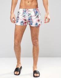 Короткие шорты для плавания Oiler & Boiler Tuckernuck Paradise