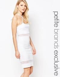 Облегающее платье с сетчатыми вставками и бретельками John Zack Petite