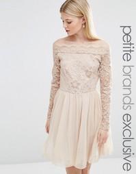 Платье миди с кружевным лифом и вырезом лодочкой John Zack Petite