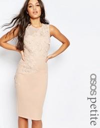 Платье-футляр миди с цветочной отделкой ASOS PETITE - Телесный