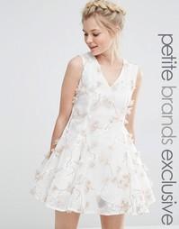 Приталенное платье с цветочной аппликацией True Decadence Petite
