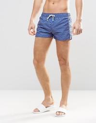 Короткие шорты для плавания Oiler & Boiler Tuckernuck - Синий