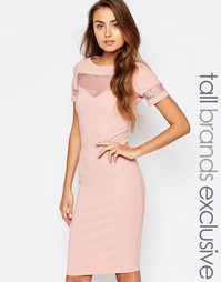 Облегающее платье в рубчик с кружевной вставкой Paper Dolls Tall