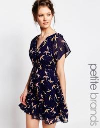 Чайное платье с принтом колибри Yumi Petite - Темно-синий